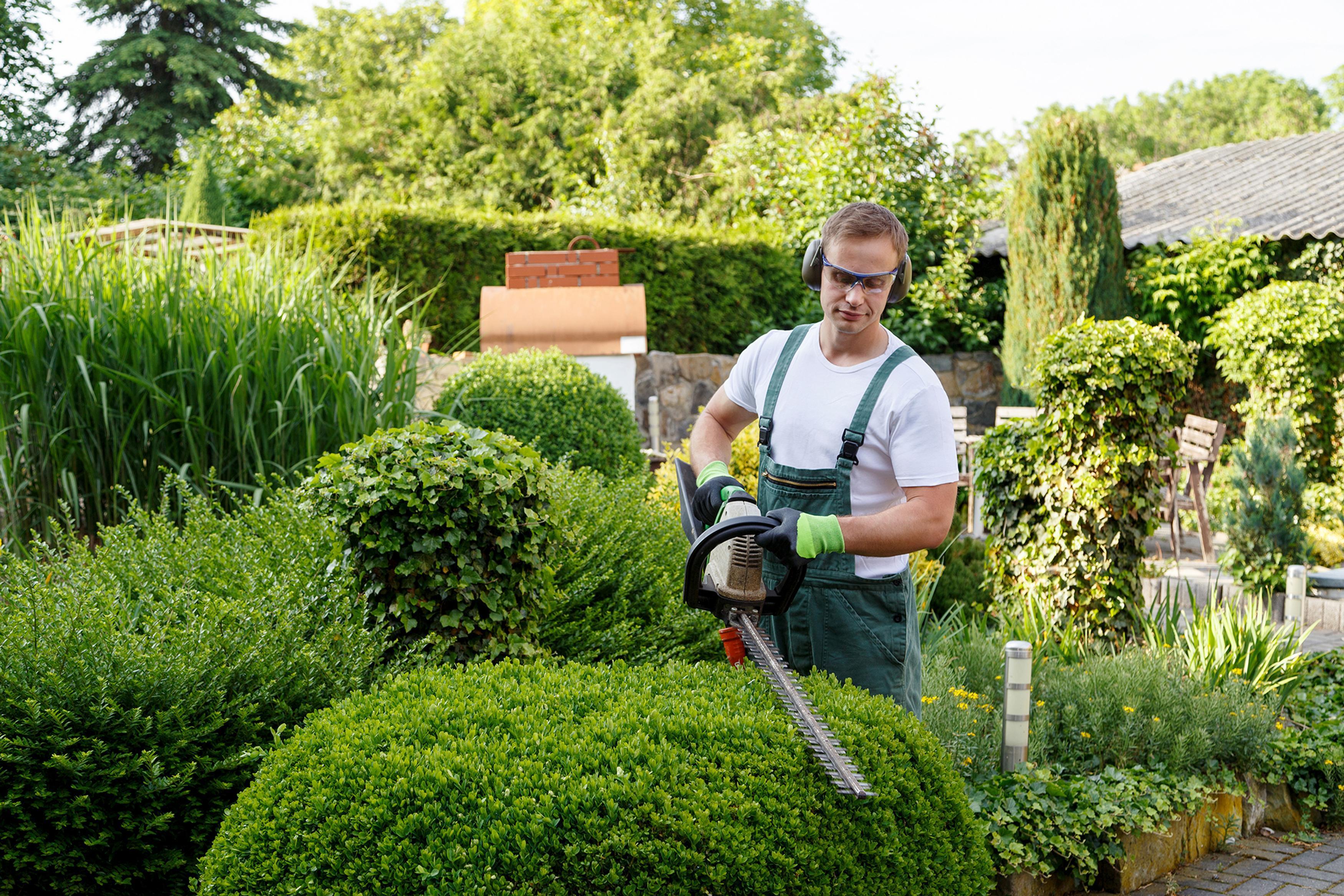 Image of a gardener landscaping a garden